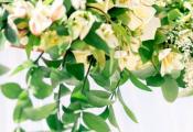 caribbean-weddings-9