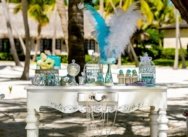 VIP OFFICIAL TIFFANY WEDDING in Dominican Republic {Paul+Pauline}