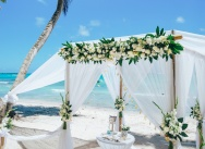 Snow-white official wedding on Saona island {Alexey and Marina}